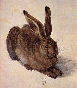 A Young Hare, 1502, Watercolor